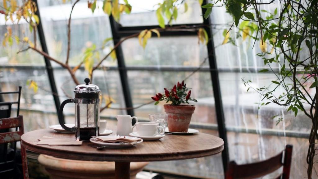 table-coffee-sunlight-flower-chair-glass
