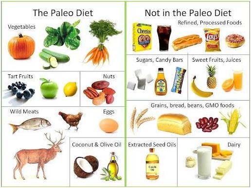What is Paleo Diet?
