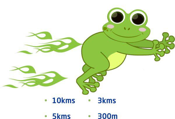 Racetime India Frog Race_ Stay Fuelled