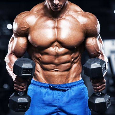 BCAA Supplements for muscle growth