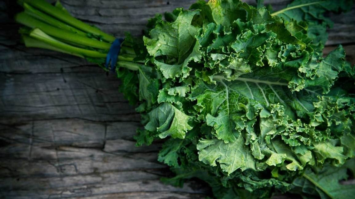 Fast&up Protein-rich vegetables