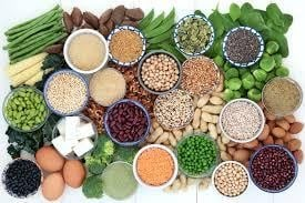 Plant Proteins for Athletes - Fast&Up