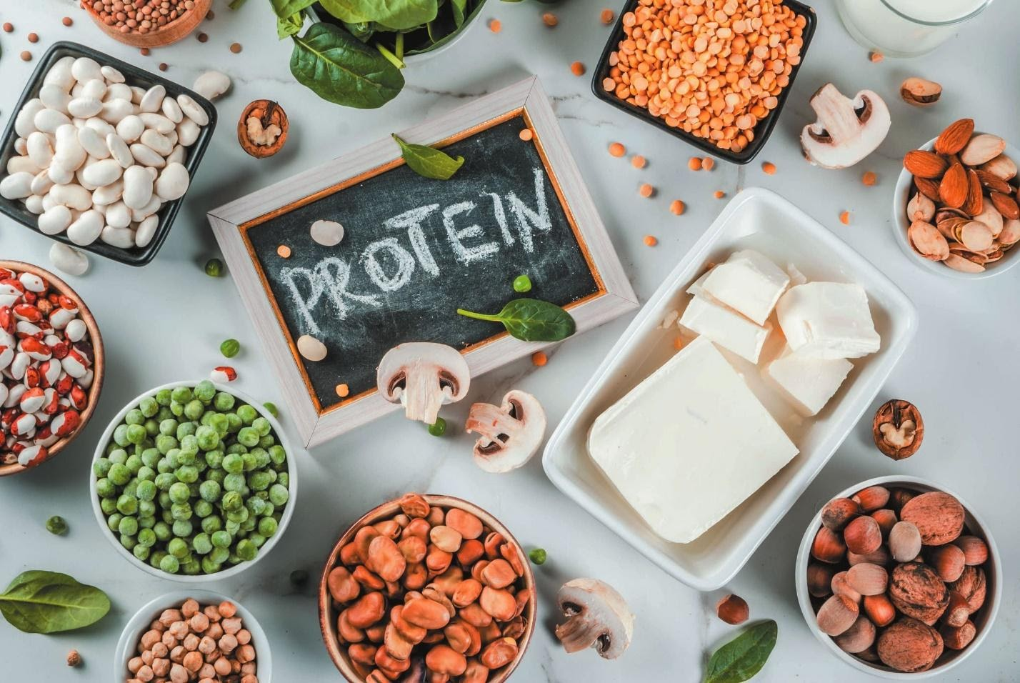 Myths & Facts About Plant Protein - Fast&Up