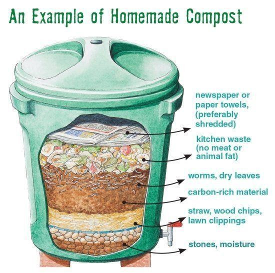 Make compost out of your kitchen waste - Fast&Up