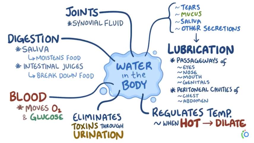 Hydration preload