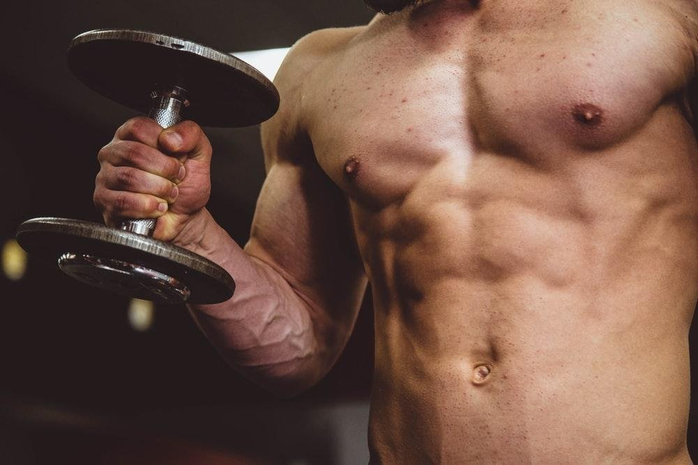 Carnitine to Gain Muscle - Fast&Up
