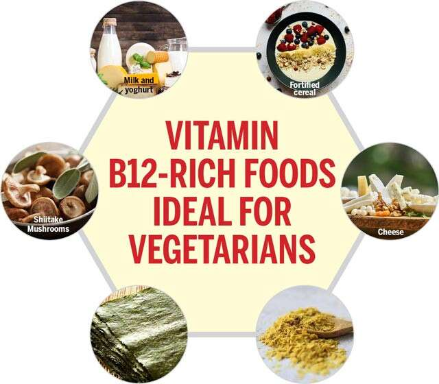 Plant Based B12 Food Sources